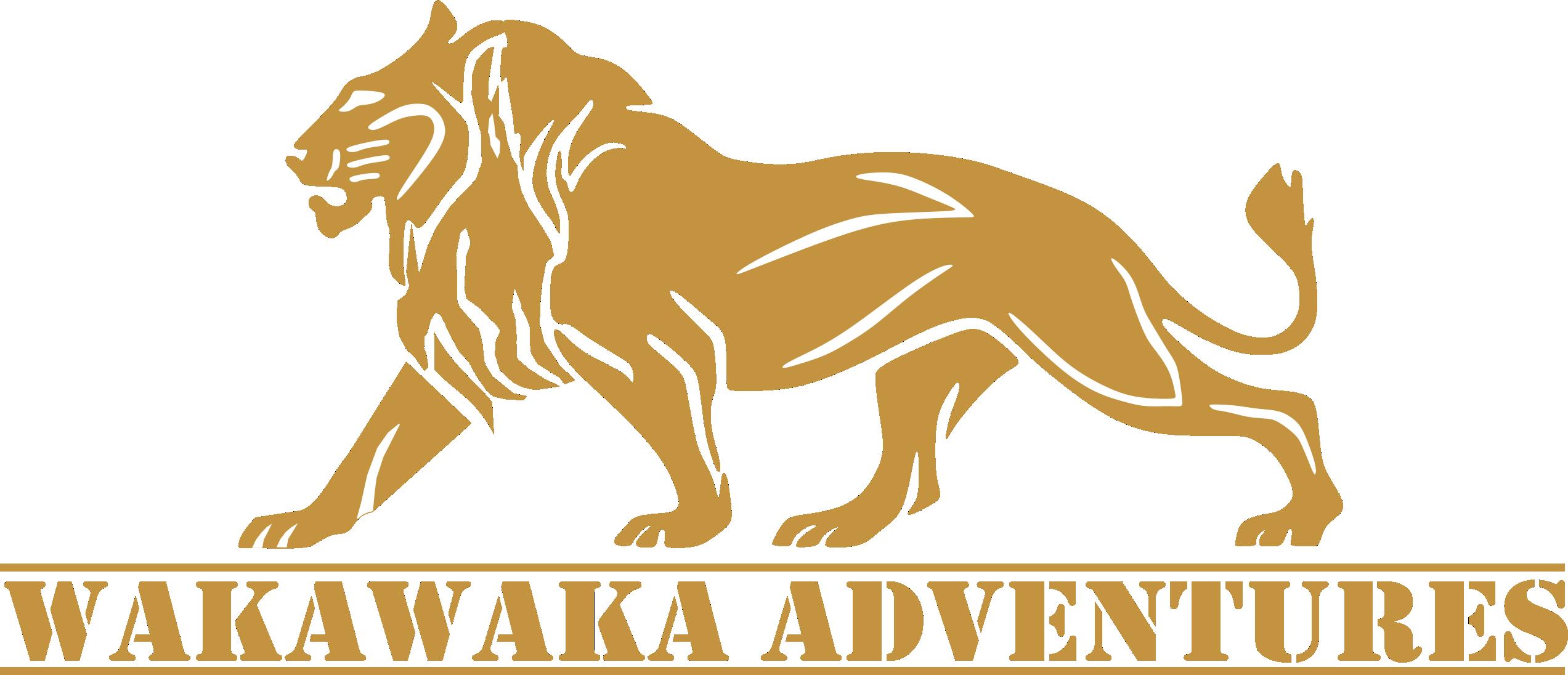 Wakawaka Adventures.png