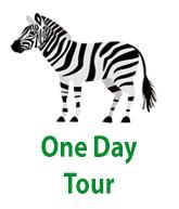 1 day tours uganda.png