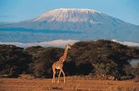 Kilimanjaro climb.jpg